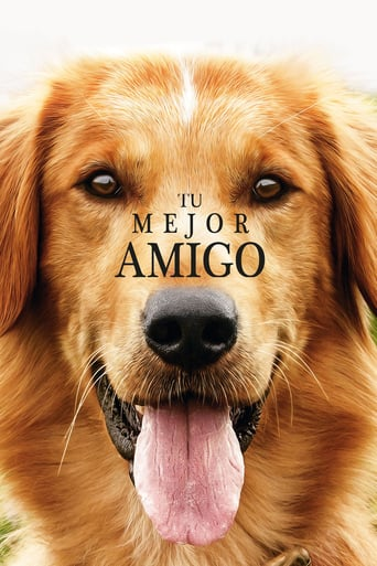 "Poster for the movie ""Tu mejor amigo"""